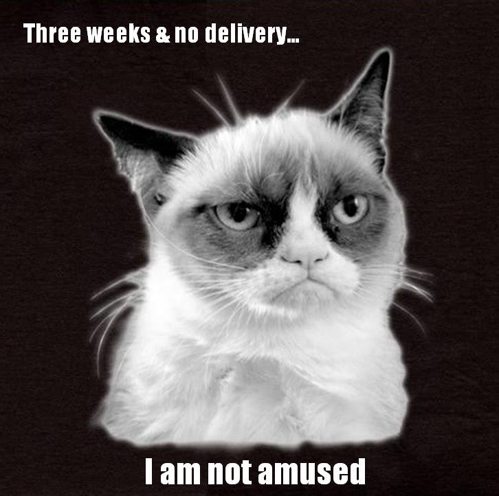 Grumpy Cat customer