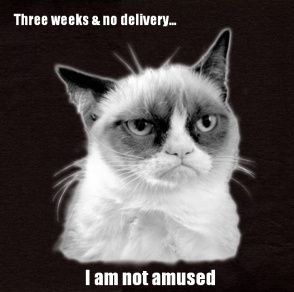 Grumpy Cat customer