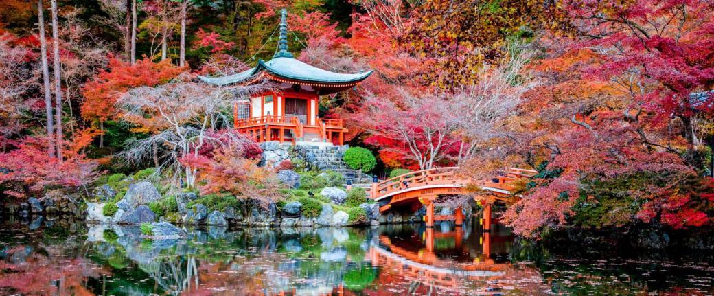 japan kyoto daigoji temple garden pagoda and bridge meadowlark botanical garden cherry blossoms vienna virginia